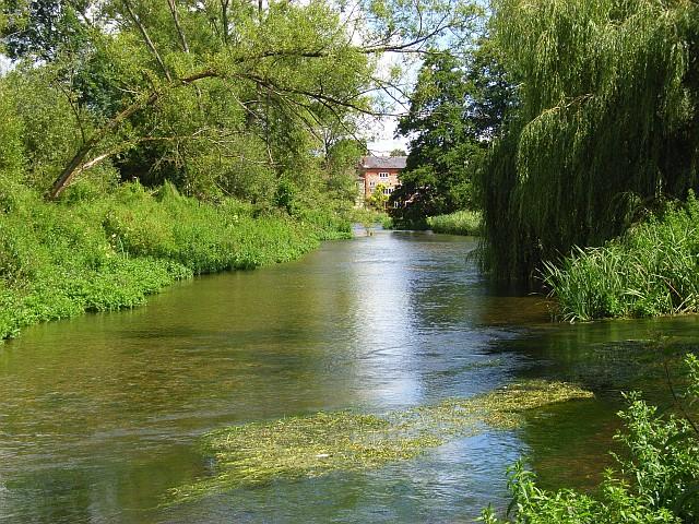 Paddleboarding River Avon